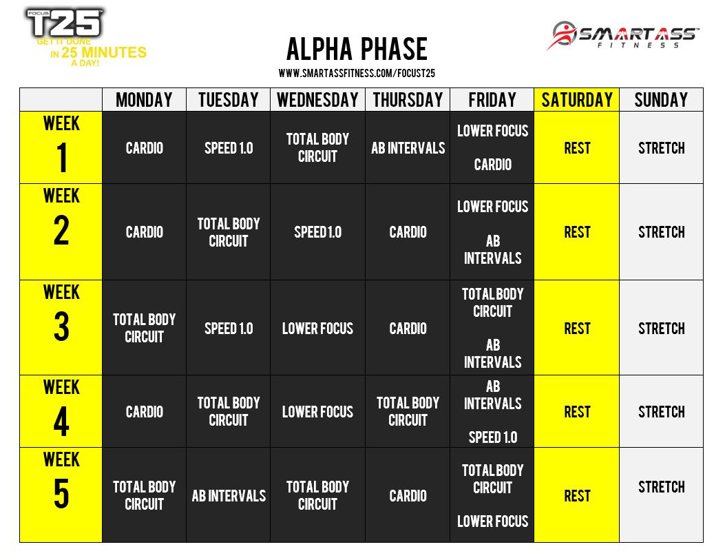 focus_t25_alpha_schedule